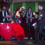 Disfruta del mejor espectáculo de flamenco en Sevilla en el tablao El Palacio Andaluz