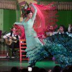 Alegría Navarro es una bailaora flamenca del Tablao Flamenco El Palacio Andaluz de Sevilla