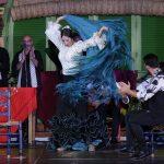 Origin of flamenco art