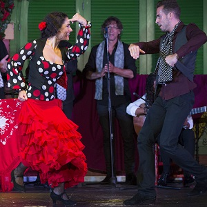 Online booking flamenco show with dinner a la carte