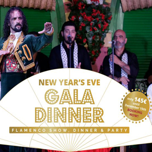 New Year Gala: Flamenco show, dinner and party