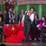 Tablao flamenco in andalucia to see a flamenco show live