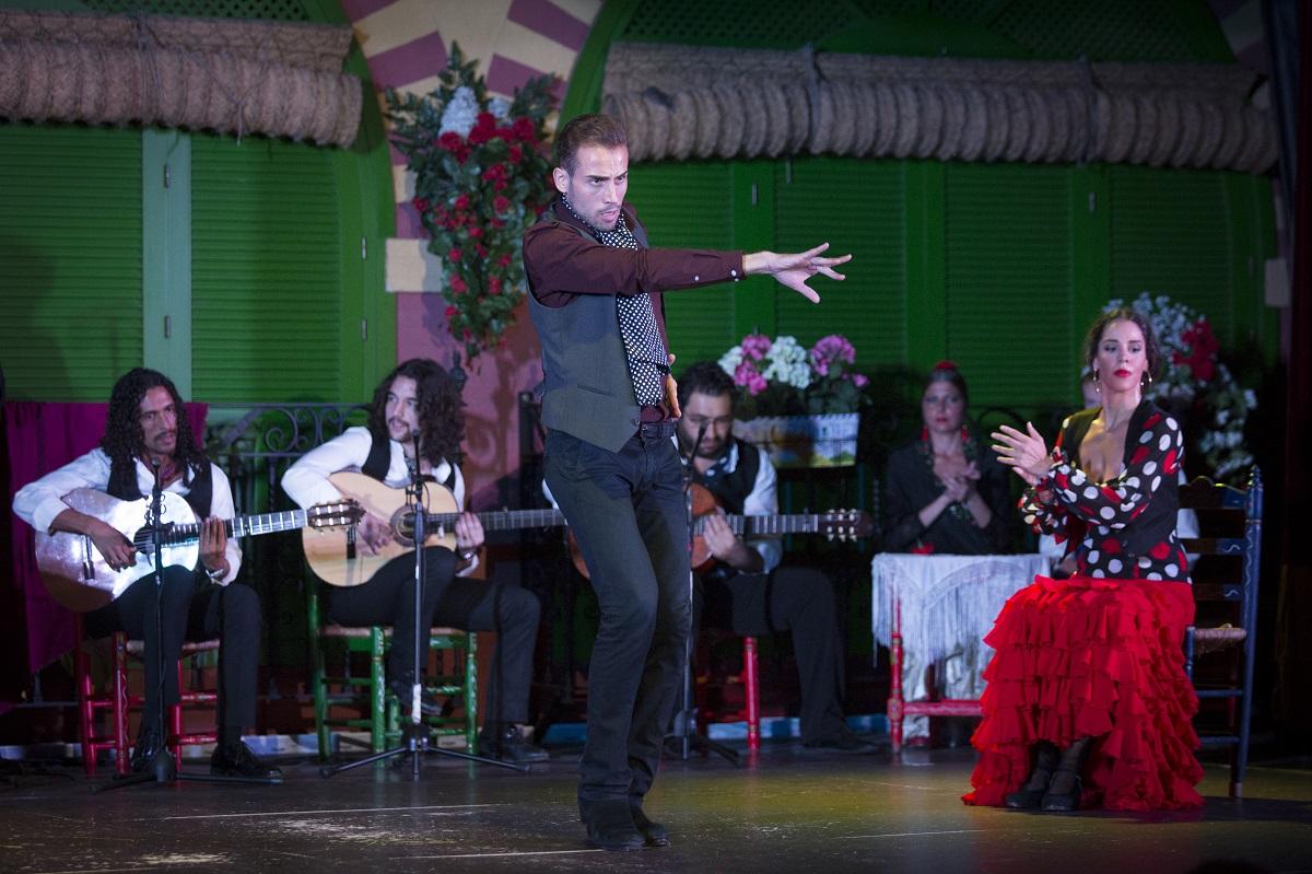 Los palos flamencos son los diferentes tipos de cante