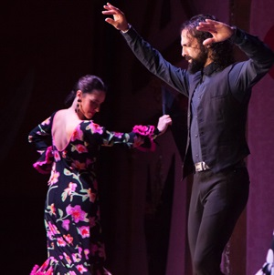 online booking flamenco show seville