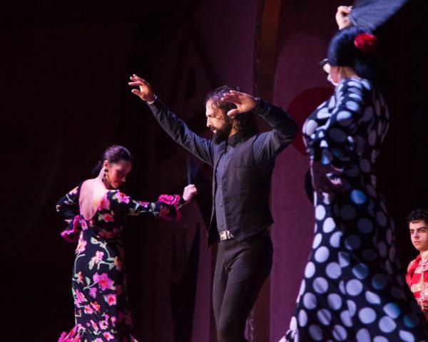Prenota lo spettacolo online di flamenco sevilla