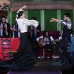 Flamenco dance: the movement of arms