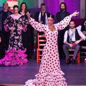 spectacle de flamenco et dîner à séville