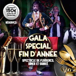 Gala Special Fin d'année à Sèville
