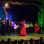 taranto en el tablao flamenco el palacio andaluz
