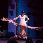 what is a flamenco art