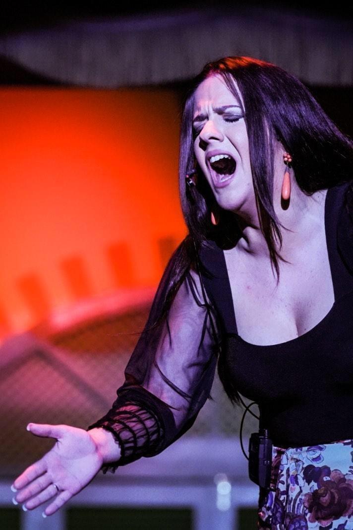 silvia reina a flamenco singer at the tablao el palacio andaluz