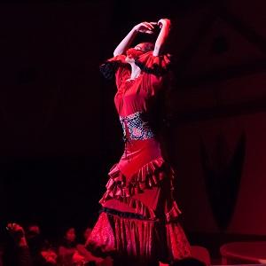 'Esencia Flamenca'