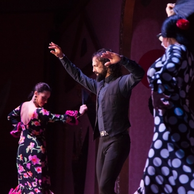 enjoy best flamenco show in seville