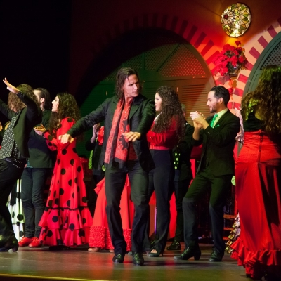 show e tablao flamenco en sevilla