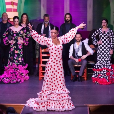 spectacle flamenco et diner a seville